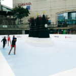 commercial synthetic ice rink, commercial synthetic ice