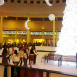 commercial synthetic ice rink, commercial synthetic ice, community ice rink