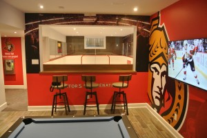 Ottawa Senators, basement synthetic ice, ottawa senators man cave