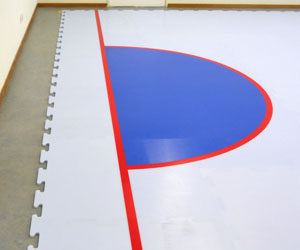 synthetic ice goal lines