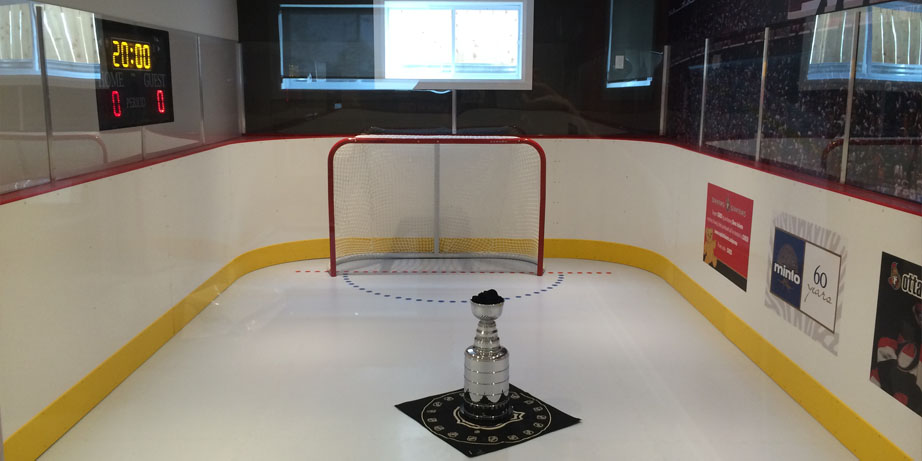 synthetic ice rink net