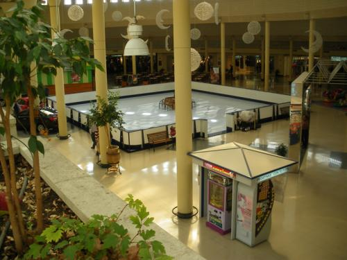 Shopping Mall Synthetic Ice Rental