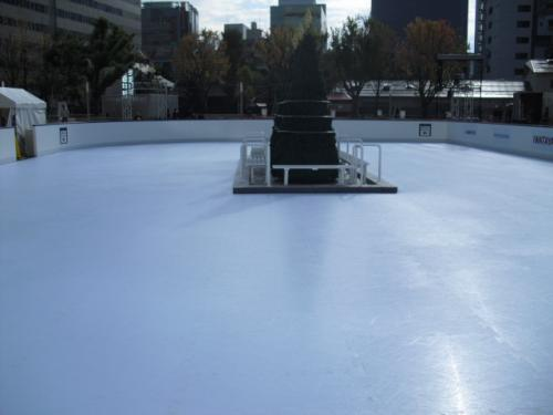 Holiday Community Rink