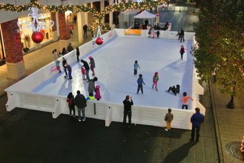 Synthetic Community Rink