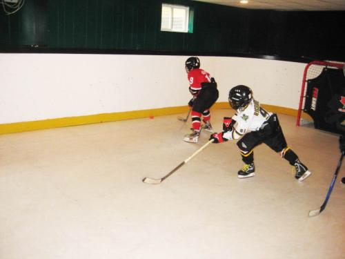 Home Synthetic Ice Rink Hockey Practise