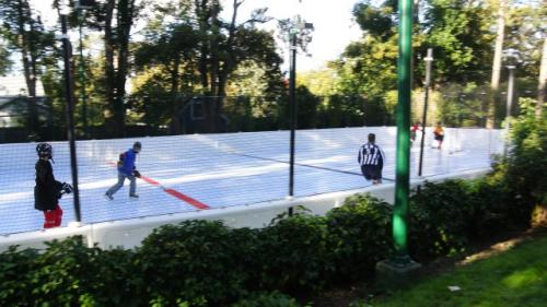 synthetic backyard ice rink