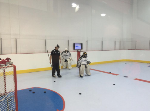 Synthetic Ice Goalie Training