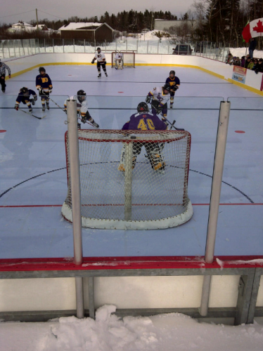 Synthetic Ice Rink Goalie