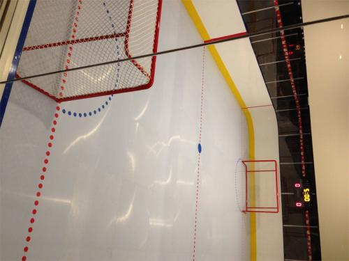 synthetic ice rink in dream home