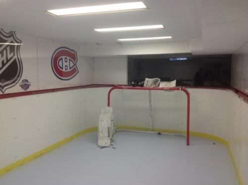 Indoor Synthetic Ice Rink for Hockey