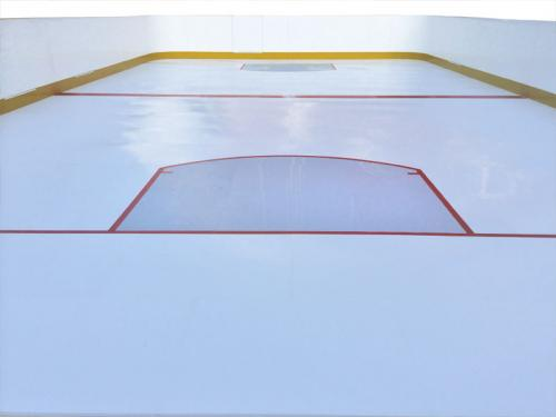 nhl style backyard synthetic rink