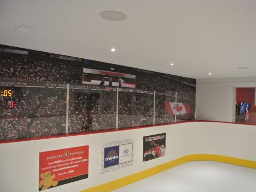 basement synthetic hockey rink