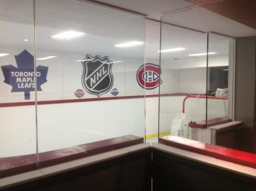 basement synthetic hockey rink in ontario