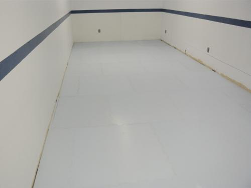 Basement Synthetic Ice Rink for Figure Skating