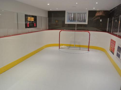 Synthetic Ice Rink for Hockey